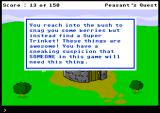 Peasant's Quest Browser You found a trinket!