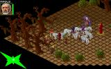 Realms of Arkania: Blade of Destiny DOS Boss battle: This druid with his pack of white wolves has one of the map pieces you're looking for.