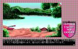 Tenshitachi no Gogo Collection PC-98 TTnG: countryside
