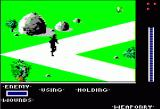 The Last Ninja Apple II The Wastelands