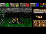 Return to Chaos Windows Dungeon Master II - Slime