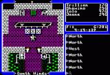 Ultima V: Warriors of Destiny Apple II Town entrance.