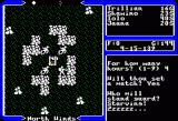 Ultima V: Warriors of Destiny Apple II Taking a nap in the wilderness.