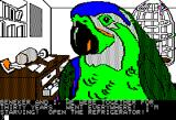 Amazon Apple II Meet Paco the parrot!