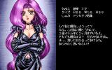 Mahjong Fantasia: The 3rd Stage PC-98 Nice... biography