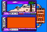Spy vs. Spy: The Island Caper Apple II On the beach with the rocket!