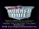 Project: Horned Owl PlayStation Start screen