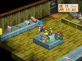 Harvest Moon: Back to Nature PlayStation Gift shop