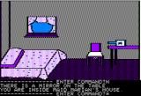 Time Zone Apple II Maid Marian's bedroom.