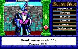 Dragon Wars DOS This is Mystalvision. Namtar's lapdog.