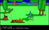 King's Quest PC Booter A rotted log. (Original PCjr release)