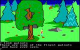 King's Quest PC Booter Walnuts. (Original PCjr release)