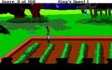 Roberta Williams' King's Quest I: Quest for the Crown Amiga Carrot patch.