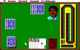 Hoyle: Official Book of Games - Volume 1 Amiga Cribbage