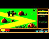 The Last Ninja BBC Micro Fighting a first enemy
