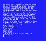 Dungeon Adventure MSX I took the driftwood and packing case
