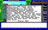 Dragon Wars DOS Purtagory city gate. No way your going through this way without a scratch or two. Or bodybag for that matter...