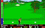 Mean 18 Amiga Teeing off...