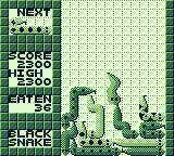 WildSnake Game Boy Whatever this thing touches on its way down, it will clear.