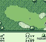 PGA European Tour Game Boy The ball landed on the fairway.