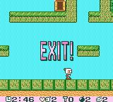 Pocket Bomberman Game Boy Color I have killed all enemies and the exit is open.