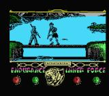 The Way of the Tiger MSX My first opponent for bōjutsu is a skeleton warrior.