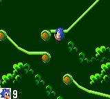 "Sonic the Hedgehog Game Gear Last jungle level. We must search and destroy ""Robotnik""."