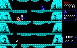 Ice Climber PC-88 Bash the birds, too!