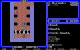 Ultima IV: Quest of the Avatar PC-98 Healer