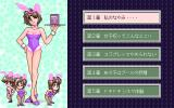 Charm PC-98 Select your episode!