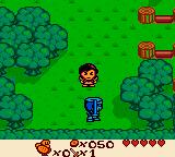 Quest for Camelot Game Boy Color Walking around the overworld