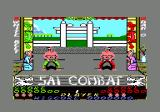 Sai Combat Amstrad CPC You start the game at white belt.