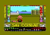 Sai Combat Amstrad CPC I was knocked out.