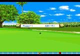 True Golf Classics: Waialae Country Club Genesis Final score for the hole