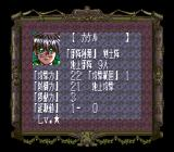 Dragon Knight 4 SNES Character stats