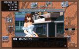 Hinadori no Saezuri PC-98 You visit a prostitute in the town. What, not enough action back in the mansion?.. :)