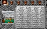 Amberstar DOS The game begins with this background information