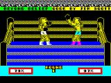 Devastating Blow ZX Spectrum Bother! He got me and he's knocked me clean across the ring. What doesn't show in the picture is the crowd going wild at the top of the screen. Nice touch.