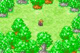 Dragon Quest Monsters: Caravan Heart Game Boy Advance In a forest