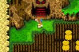 Banjo-Kazooie: Grunty's Revenge Game Boy Advance Does not look welcoming.