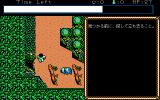 Hillsfar PC-98 Forest dungeon