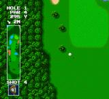 Power Golf TurboGrafx-16 Flight of the ball