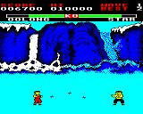 Yie Ar Kung-Fu BBC Micro Star, who throws shurikens at you. Quite tough to defeat her.