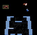 Ice Climber NES Trying to catch the bird