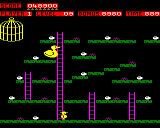Chuckie Egg BBC Micro Level 9 is a repeat of the first level. There are no geese here, just a  giant duck that homes in on you.