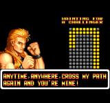Art of Fighting TurboGrafx CD Ryo is waiting for more challenge