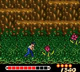 Yū Yū Hakusho: Horobishi Mono no Gyakushū Game Gear These flowers attack with gases
