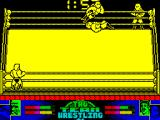 American Tag-Team Wrestling ZX Spectrum He's got me down. Once down the object seems to be to jump on your opponent as often as possible. This reduces their stamina / health bar
