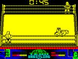 American Tag-Team Wrestling ZX Spectrum Just before the end of the bout and I get caught in a series of falls. As soon as I get up he drops me again. This is the final pin down
