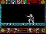 Lone Wolf: The Mirror of Death ZX Spectrum My alter ego is using the KAI power of invisibility. I know this because I thought he was deas and I tried to walk to the left, only to be stopped and hit by something.